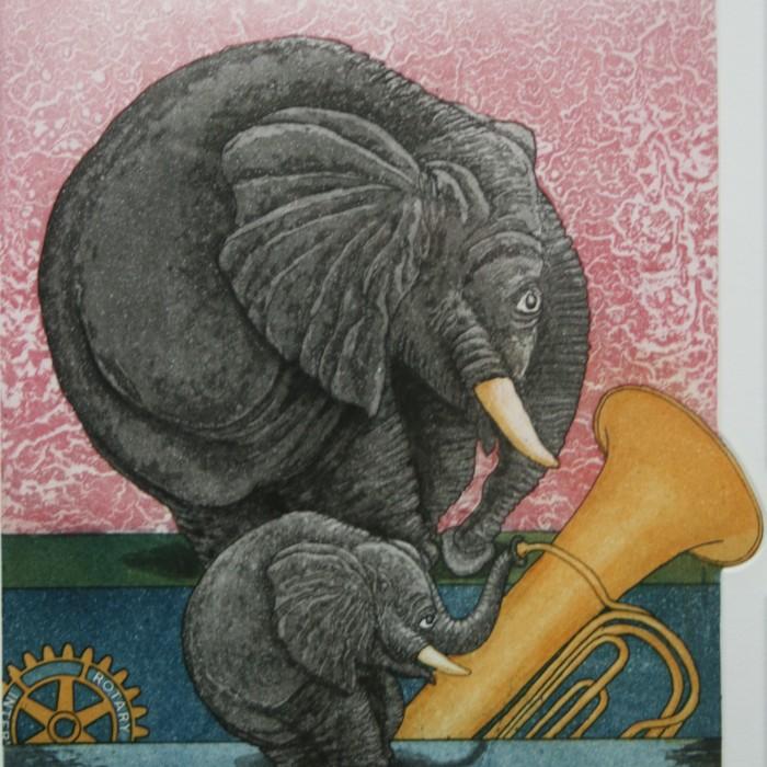 415 Kleiner Trompeter 180,- €