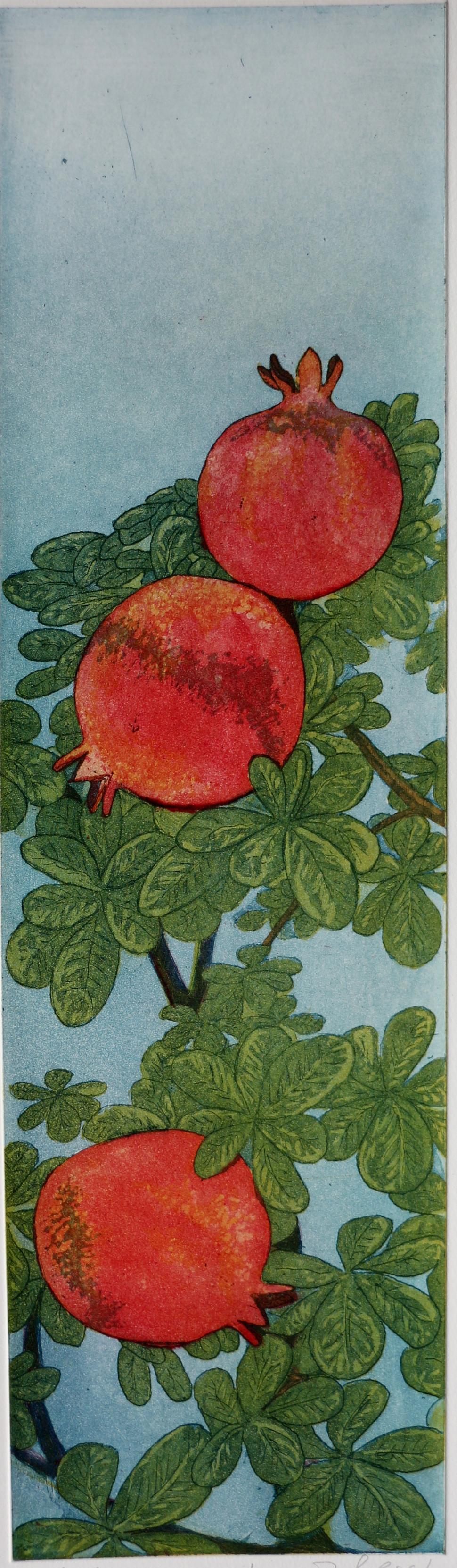 429-Granatäpfel-150.-€